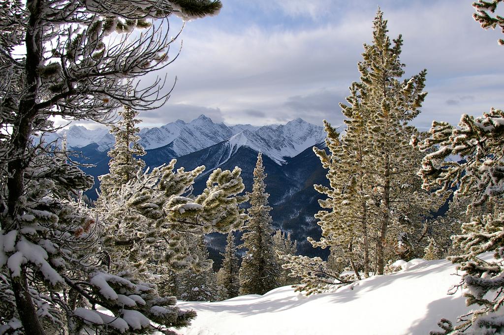 Sulphur-Mountain-Banff