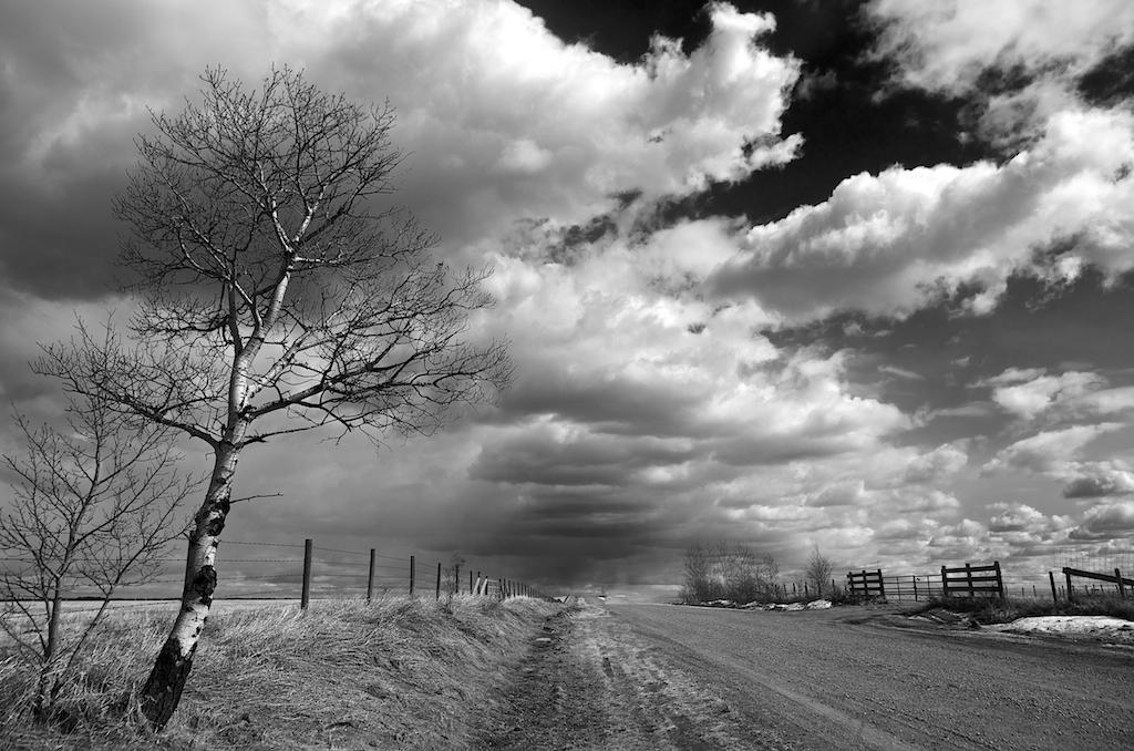 Alberta-Storm-Chaser