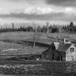 Alberta-Abaondoned-Homestead